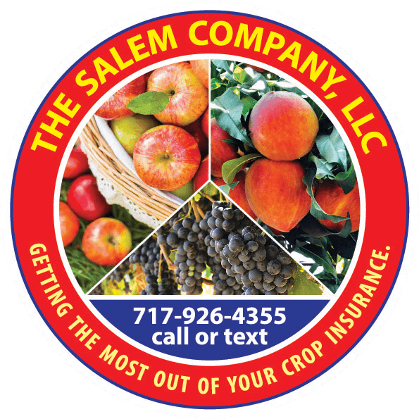 The Salem Company, LLC red logo