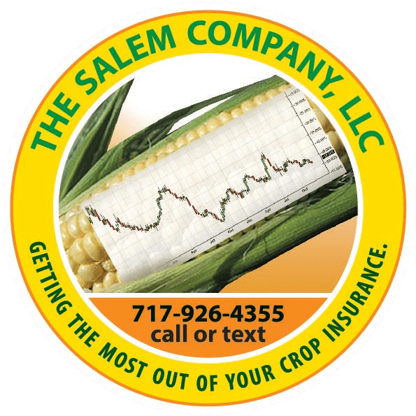 The Salem Company, LLC yellow logo